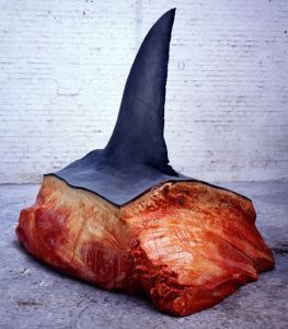 requin-steak.jpg